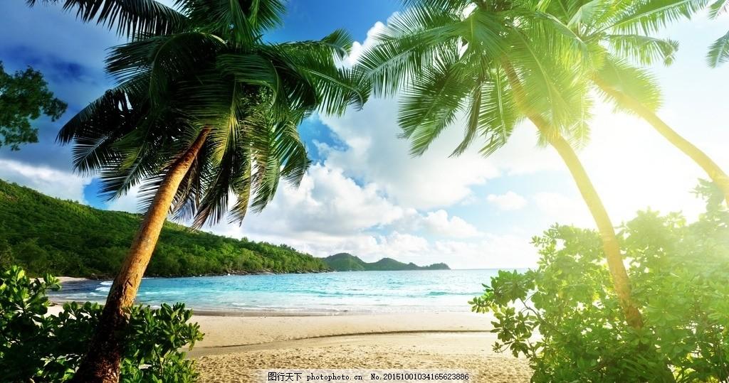 美丽的海滩 夏天 海滩 太阳 椰树 蓝天 白云 摄影 自然景观 自然风景