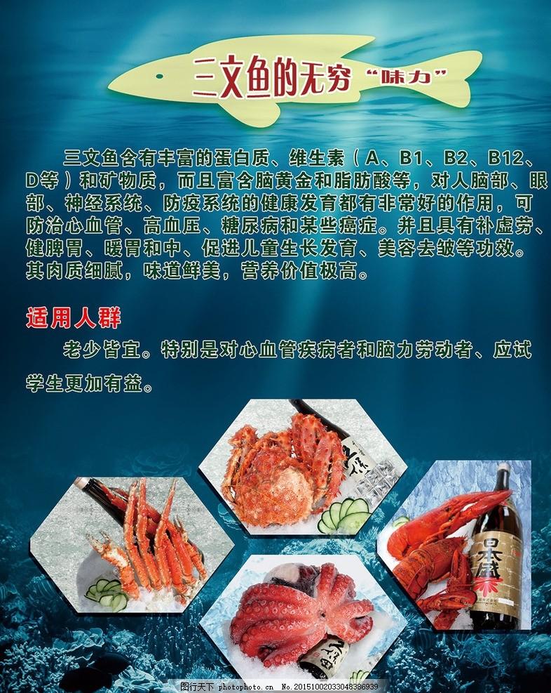 三文鱼 三文鱼营养 三文鱼价值 寿司 料理 日本料理 海底世界 pop海报