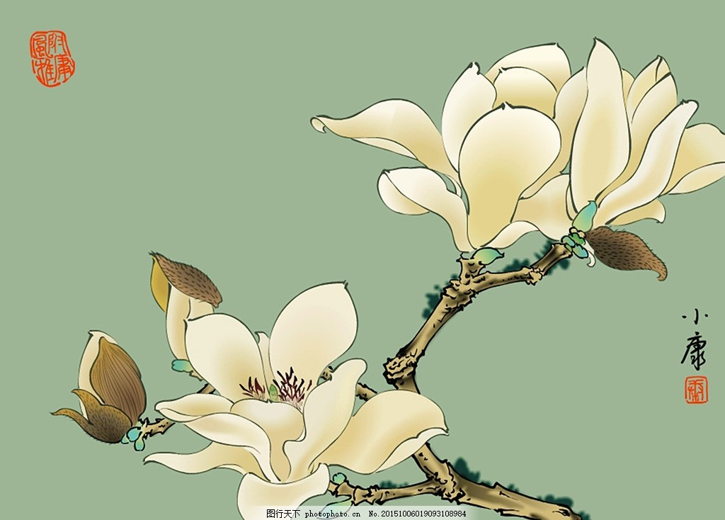工笔画玉兰 工笔画 国画 玉兰 设计 文化艺术 共享图片 设计 文化艺术