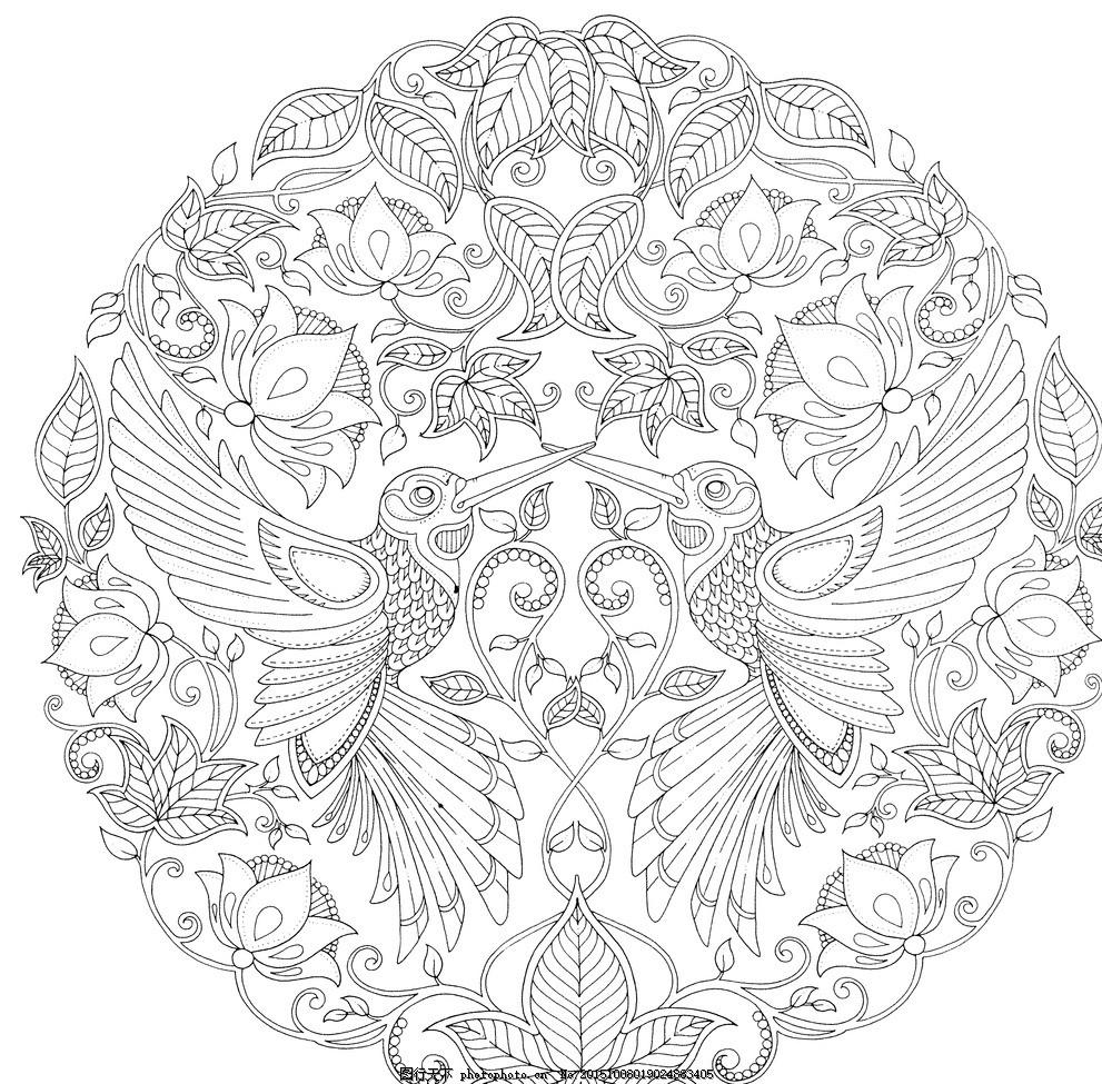 秘密花园 手绘 秘密花园 高清 黑白 花卉 学习 设计 文化艺术 绘画