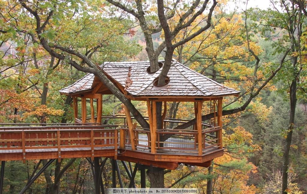 美丽树屋设计图素描