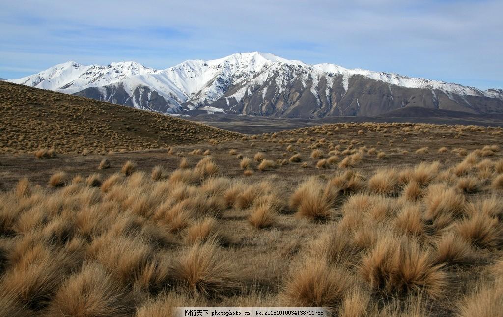 荒野 戈壁 荒漠 雪山 野草 秋天 摄影 自然景观 自然风景 400dpi jpg