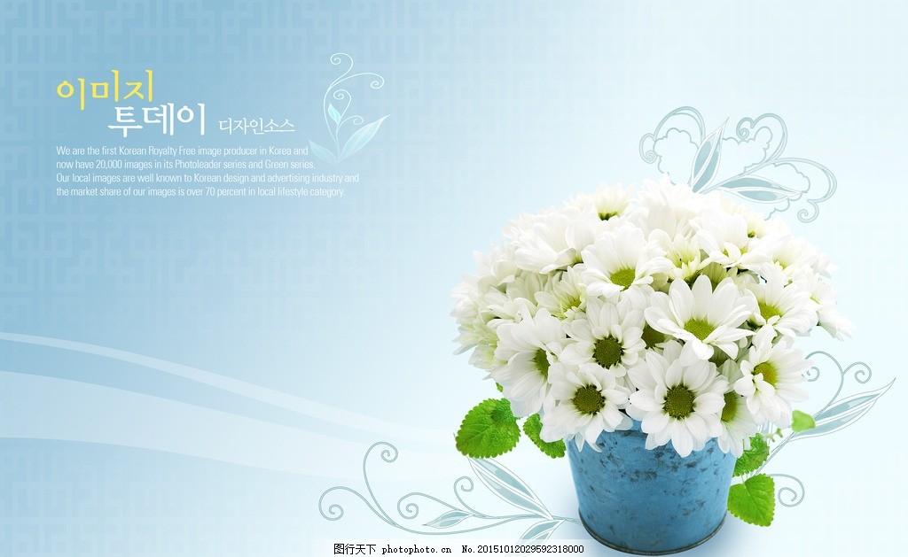 鲜花海报 春季素材 春季鲜花 春季海报元素 春季海报设计 鲜花底版