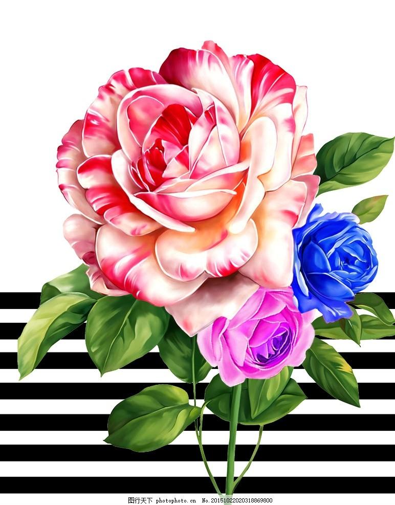 复古玫瑰花 欧式玫瑰花 手绘玫瑰 梦幻玫瑰花 白玫瑰 香槟玫瑰