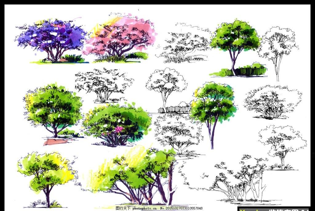 手绘彩色立面树分层素材图 手绘立面树 手绘乔木 分层手绘树 电脑手绘
