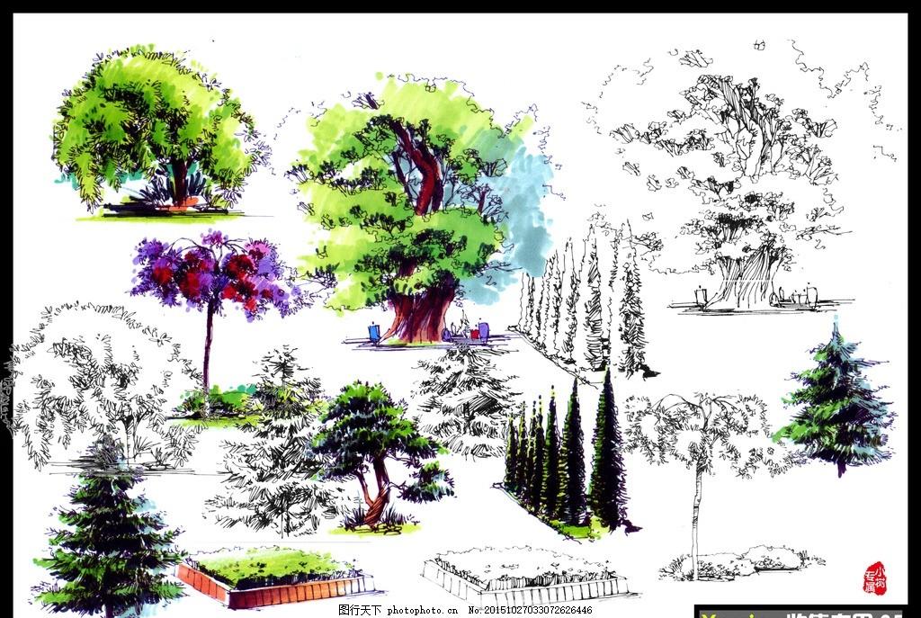 手绘立面树 手绘彩色素材 手绘素材 灌木乔木手绘