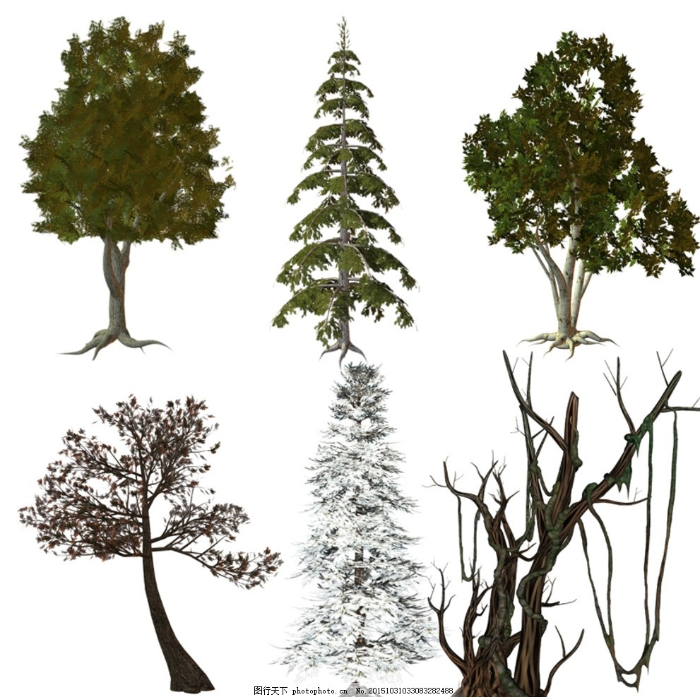3d 绿树 枯树 松雪 园林素材 效果图素材 3d植物石头 设计 psd分层