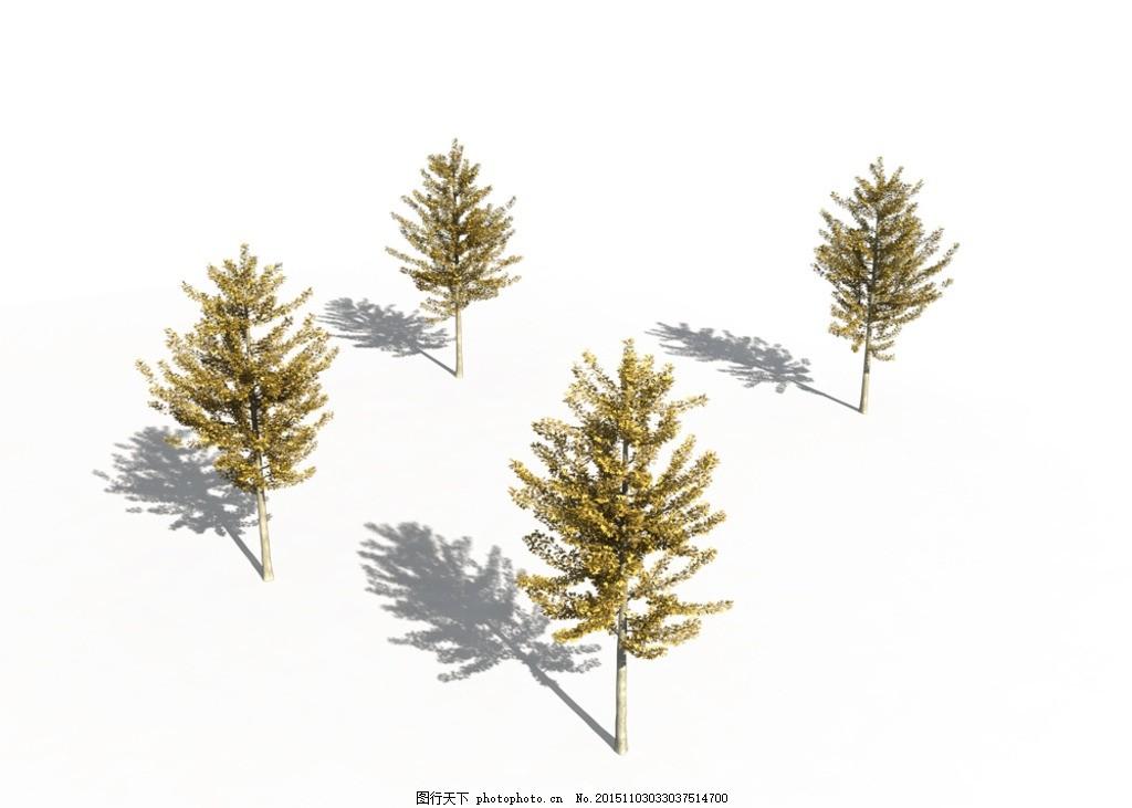 ps后期素材 银杏树 灌木 写实 树木 植物 花草