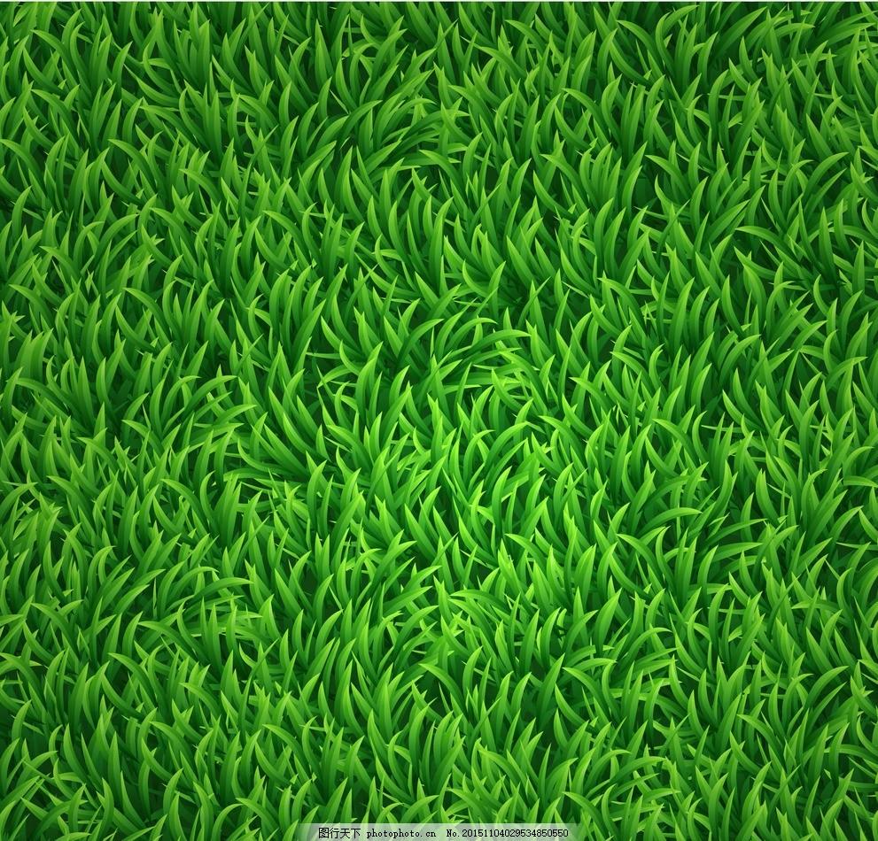 草皮,草地 草坪 足球场 球场草皮 高清草皮 自然