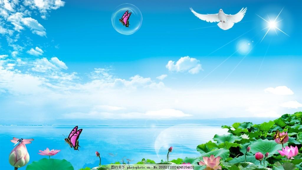 蓝天白云 小鸟 蝴蝶 莲儿 清水 太阳