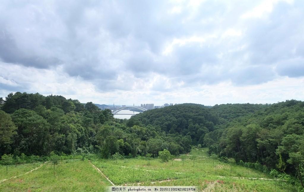 景观 建筑园林  远眺南宁大桥 蓝天 白云 树林 草坪 远眺 城市 高处