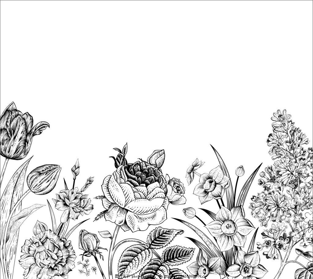 手绘花卉 线描花卉 手绘花卉背景 花朵 鲜花 花卉插图 插图 壁纸图案