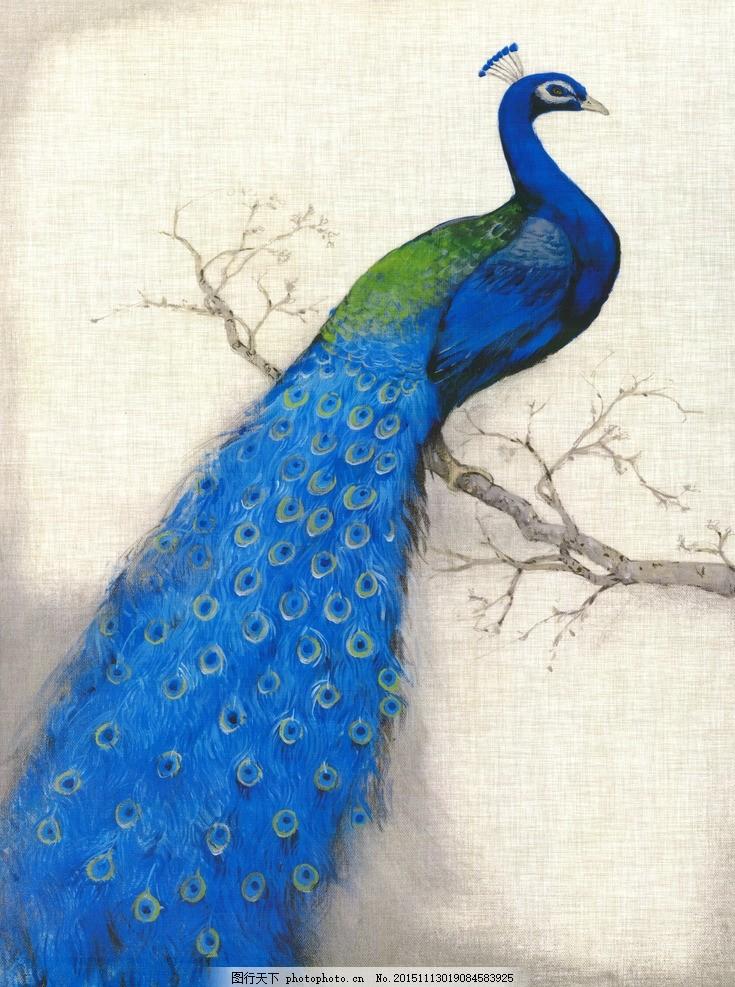 豆子动物的孔雀的画