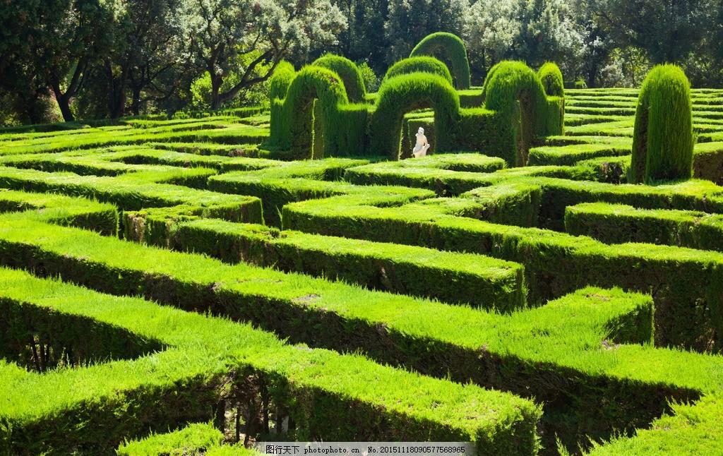壁纸 成片种植 风景 植物 种植基地 桌面 1024_646