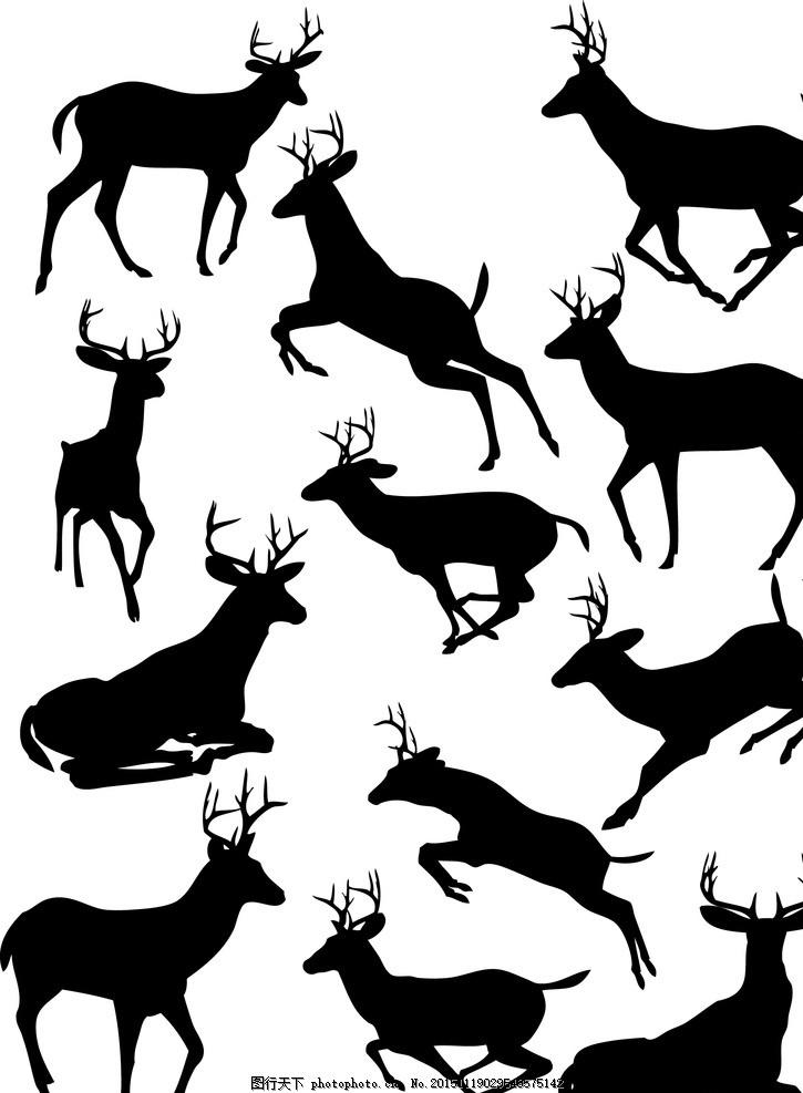 特写 大自然 梅花鹿 动物 鹿群 野生鹿 保护动物 梅花鹿剪影 平面素材