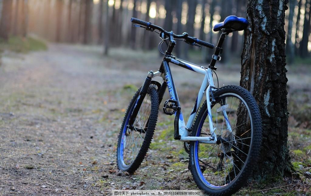 自行车 单车 小路 道路 阳光 摄影 现代科技 交通工具 72dpi jpg