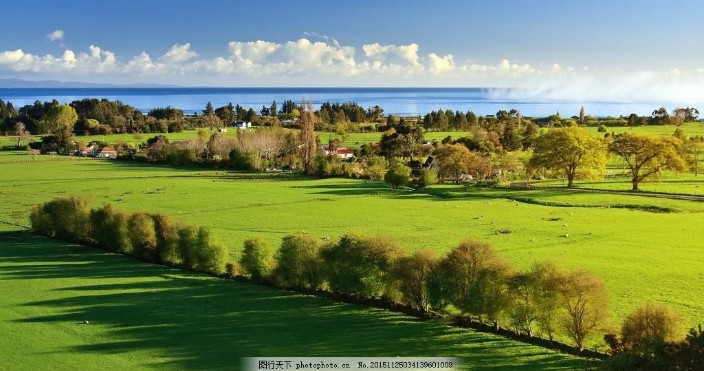 风景 大海 绿色 景观 树 唯美 山水风景 摄影