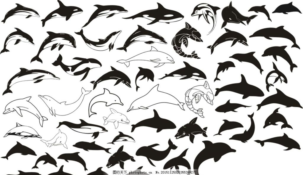 海豚 虎鲸 生物世界 海洋生物 海豚剪影 动物剪影 海洋动物剪影 设计