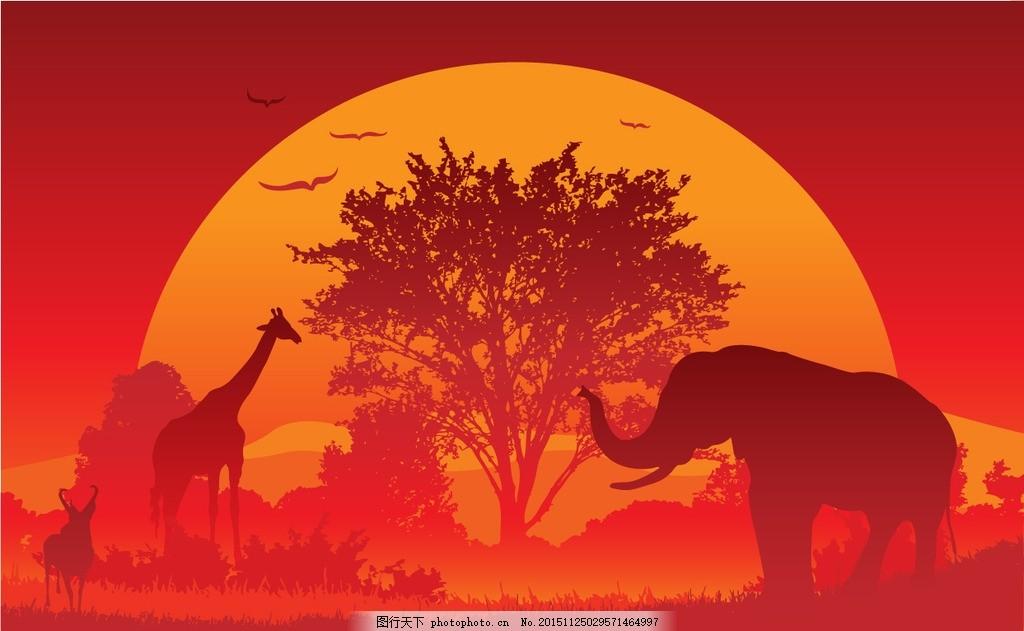 夕阳中的动物