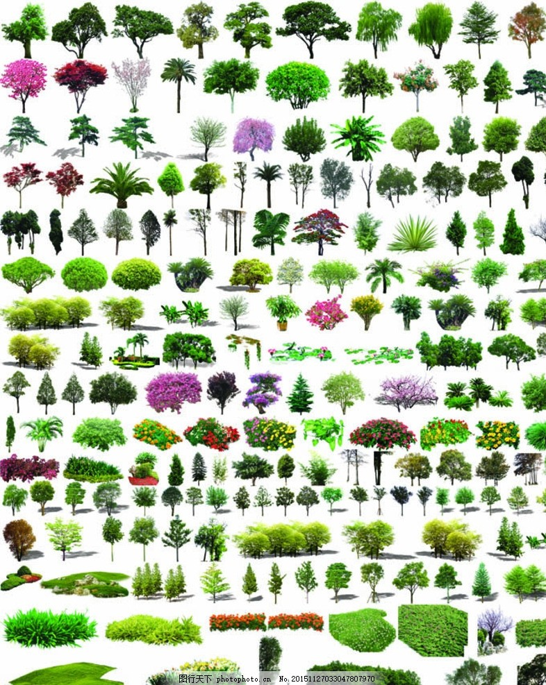 树造型 花坛 花蓠 热带树 亚热带树 寒带树 素材类 设计 psd分层素材