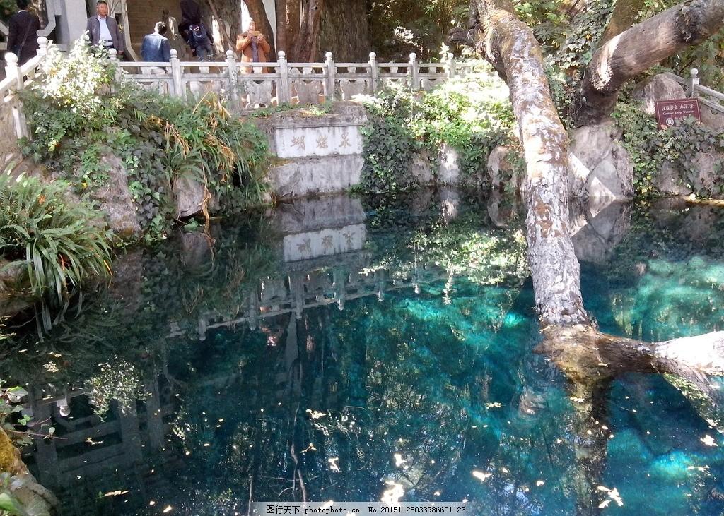 蝴蝶泉光影 蝴蝶泉 光影 蓝色池水 古树 落叶 风景区 摄影 旅游摄影