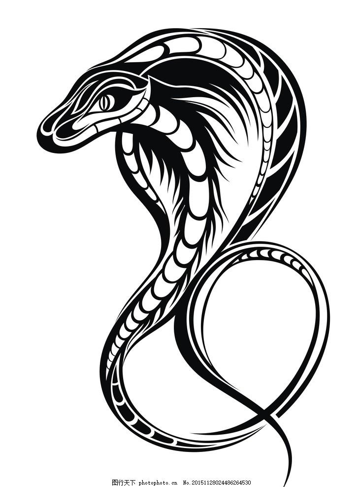 矢量素材 眼镜蛇 黑白 剪影 矢量素材 图案 眼镜蛇 矢量线稿动物 设计