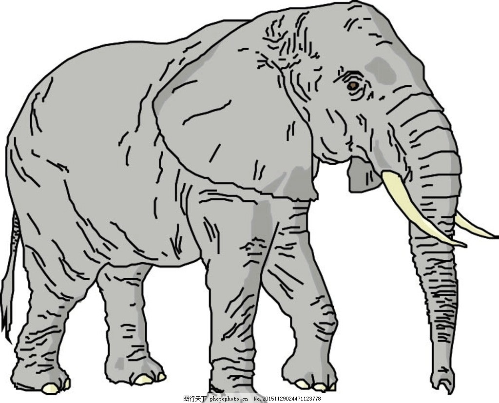 大象 象牙 耳朵 鼻子 眼睛 腿 尾巴 儿童 卡通 绘画 绘本 插画 漫画
