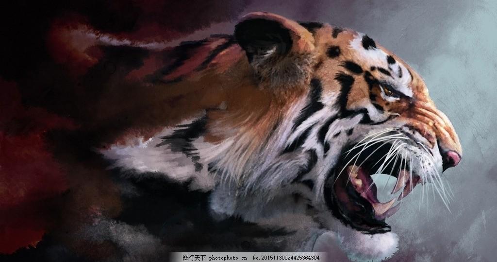 老虎 老虎照片 老虎头 老虎彩色 凶猛老虎 动物