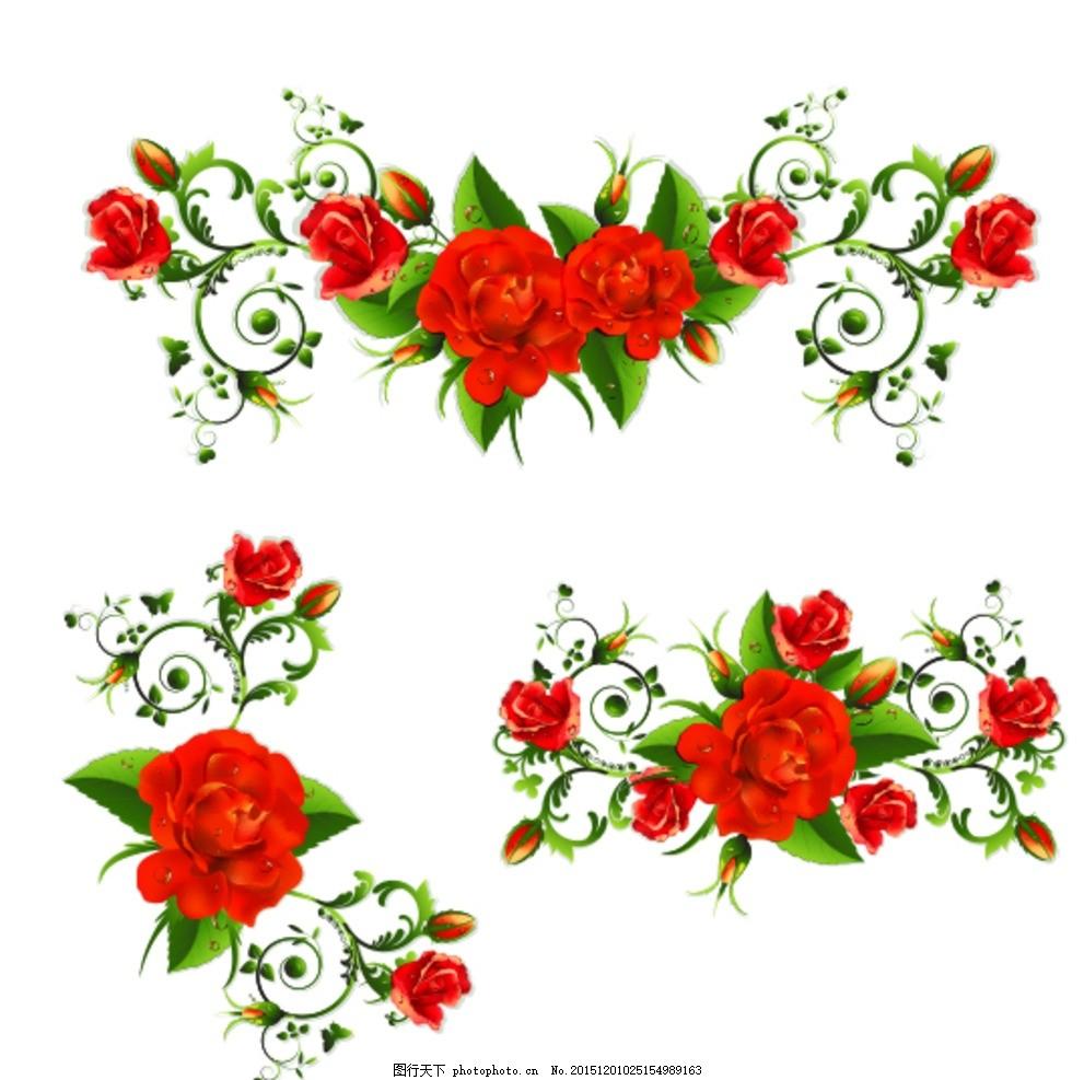 玫瑰 边框 玫瑰花 花卉 花朵 鲜花 植物 花藤 花蔓 藤蔓 情人节 婚礼