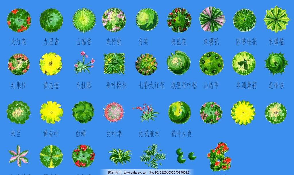 ps景观 总平面图素材 景观设计 风景园林 彩平素材 植物图例 平面树