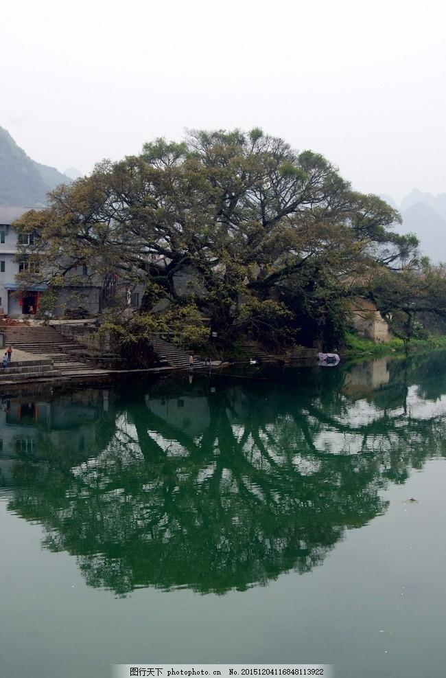 鹿寨中渡 风景 乡村 小河 摄影 自然景观 自然风景