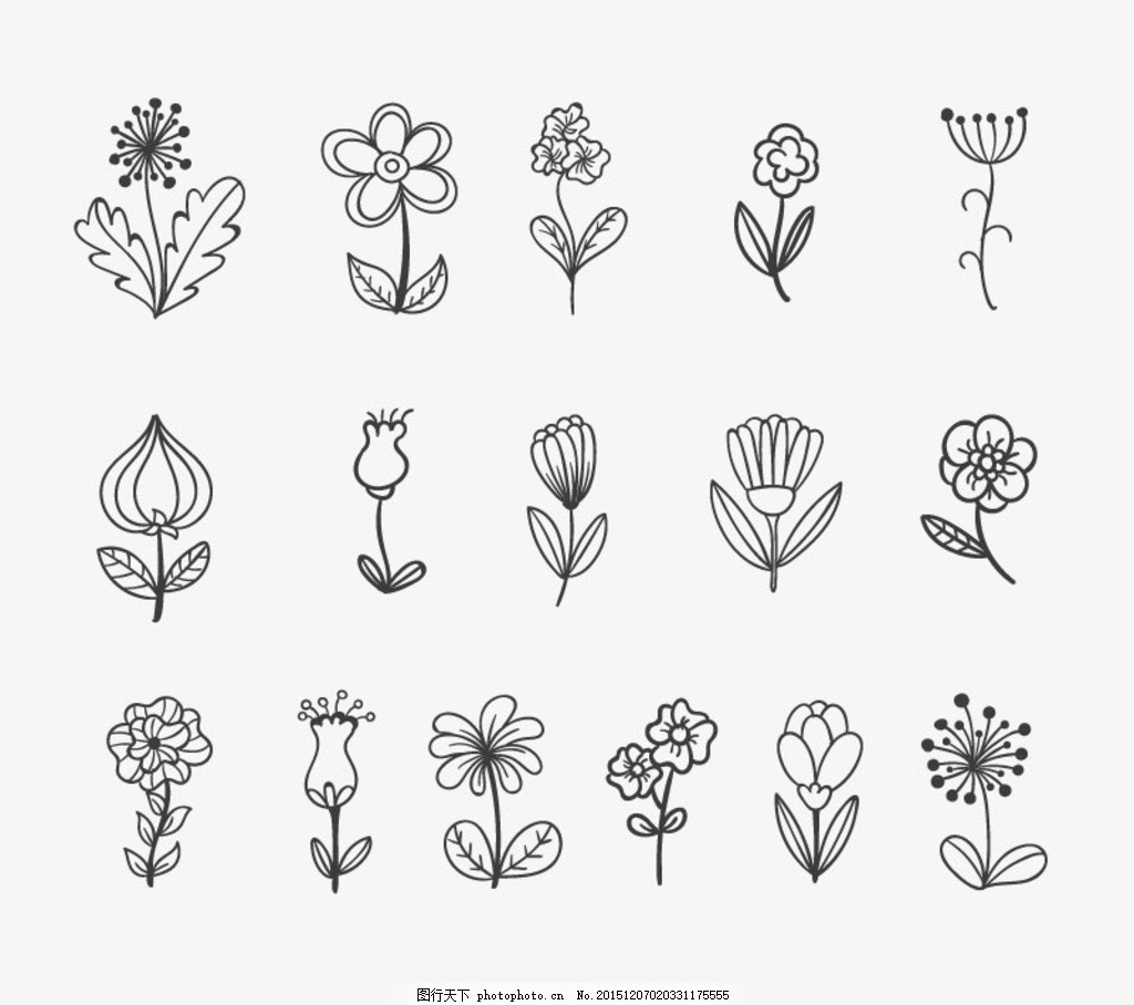 时尚手绘 花朵 花朵设计 矢量素材 花卉 线描 绘画 黑白 线条