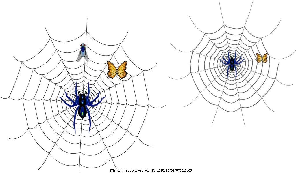 蜘蛛网 矢量 蝴蝶 苍蝇 动物 设计 广告设计 广告设计 pdf