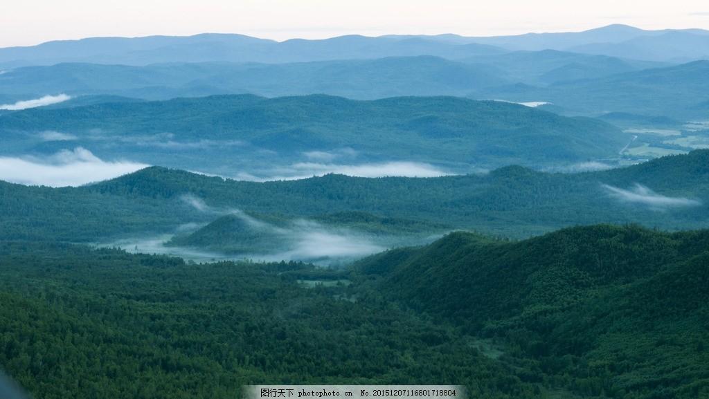 绿树 诺敏大山 鄂伦春 树木 木材 原始森林 摄影 自然景观 自然风景