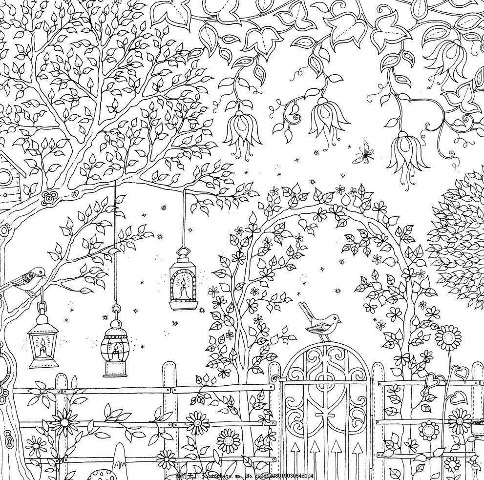 秘密花园 手绘本 动植物图 素描图 黑白