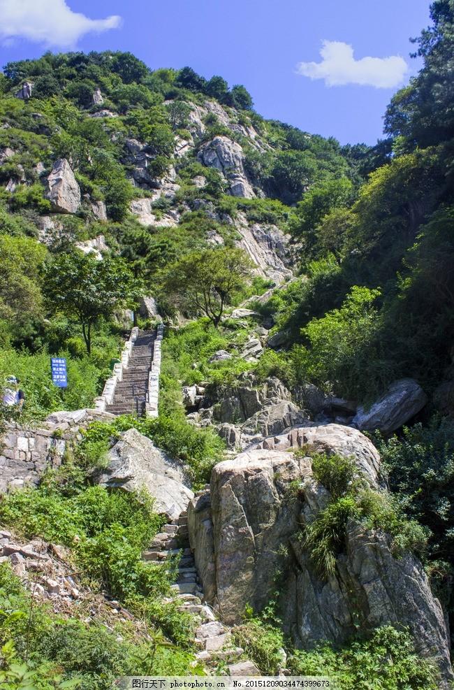 泰山 青山 绿树 苍劲 青色 绿色 大气 摄影 自然景观 山水风景 绝美山