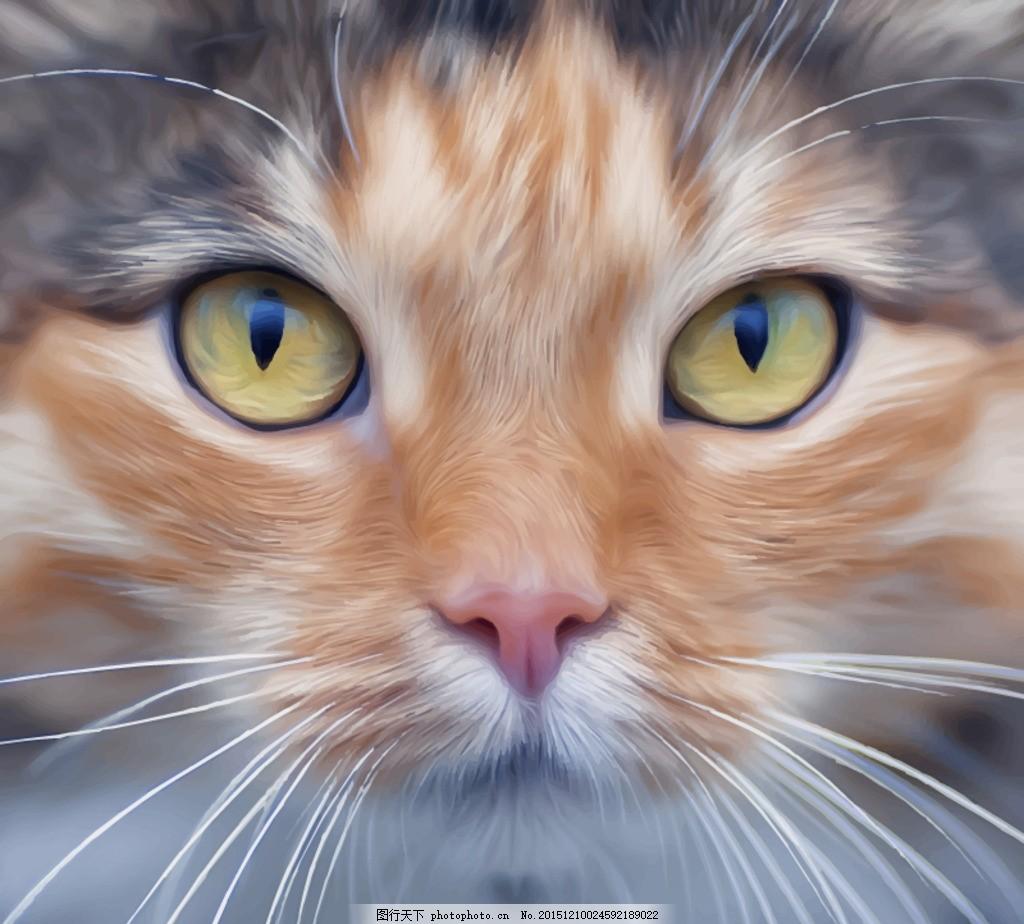 宠物猫头像