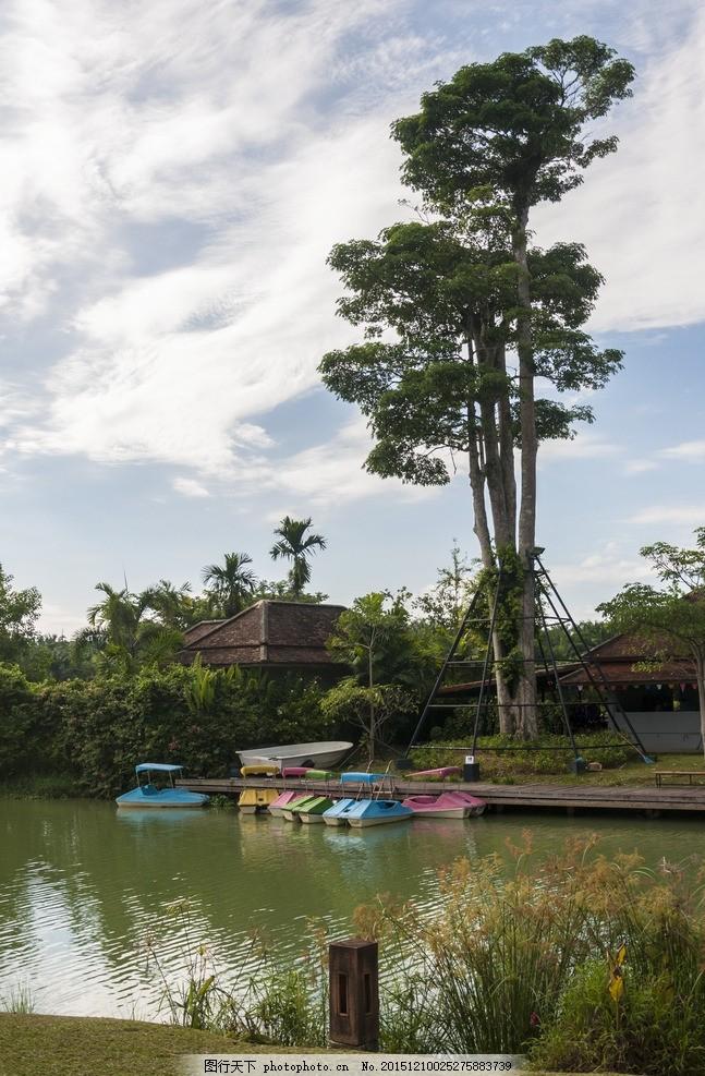 小池塘 河边风景 河边树木 蓝天白云 摄影 生物世界 树木树叶 300dpi