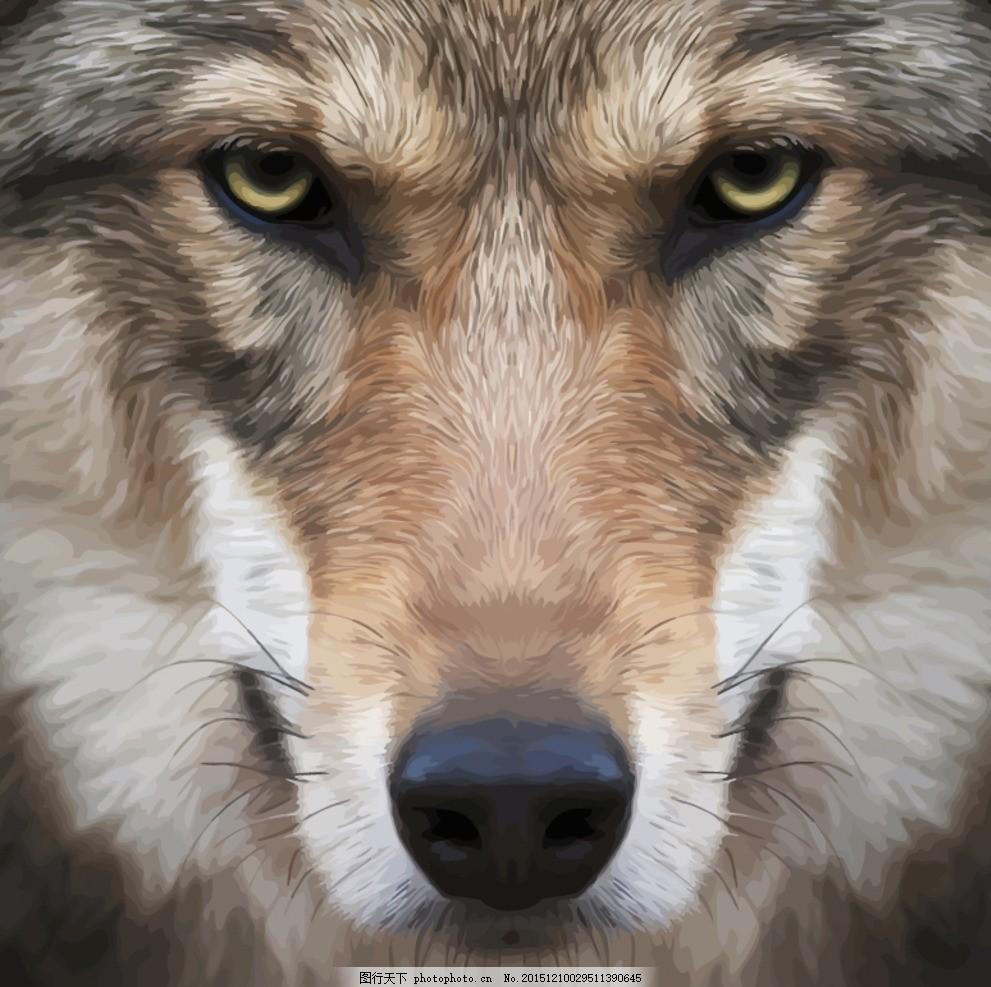 狼头 动物 水彩画 矢量图