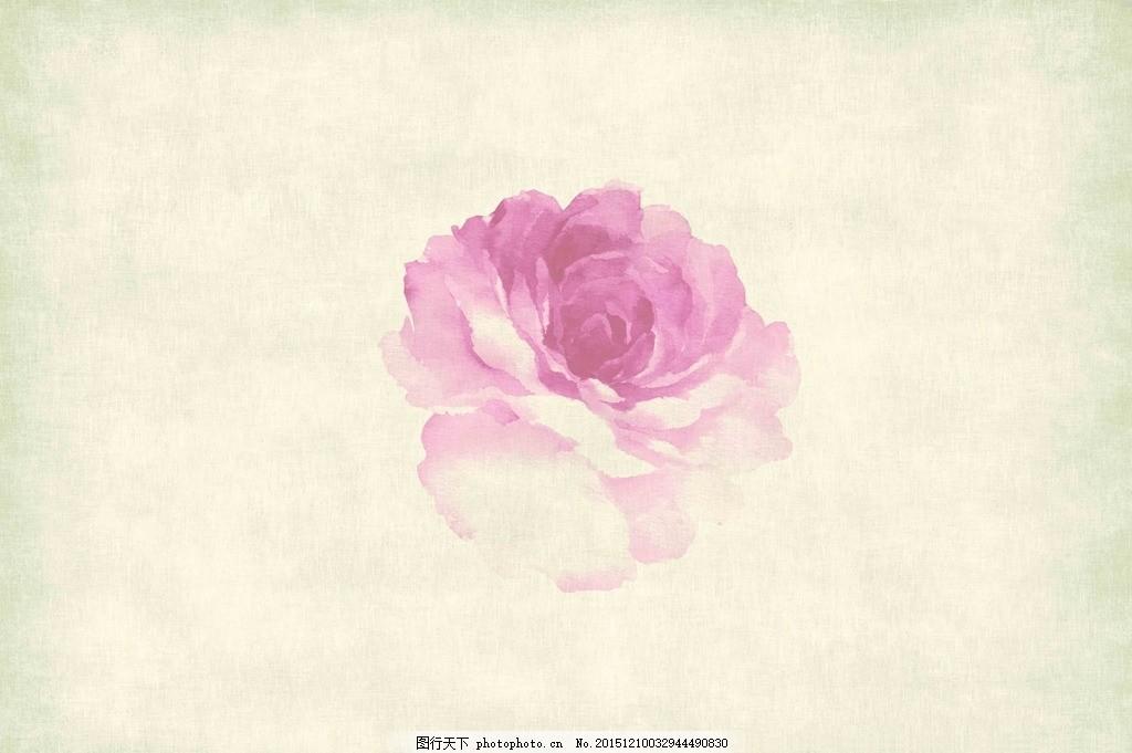 水墨牡丹 古风 背景 粉色
