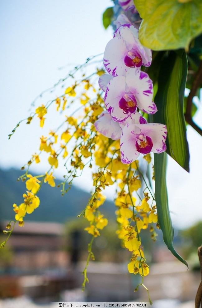 婚礼布置 婚庆外景布置 优美图片 摄影 风景 鲜花