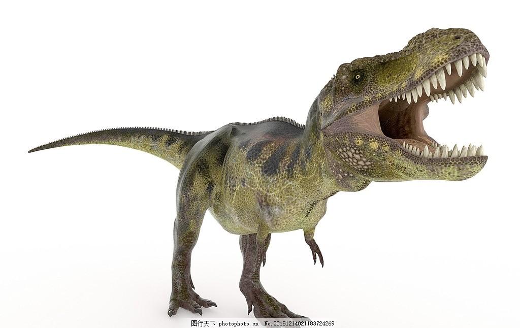 炫酷恐龙 唯美 野生 灭绝动物 史前动物 白垩纪 侏罗纪 霸王龙