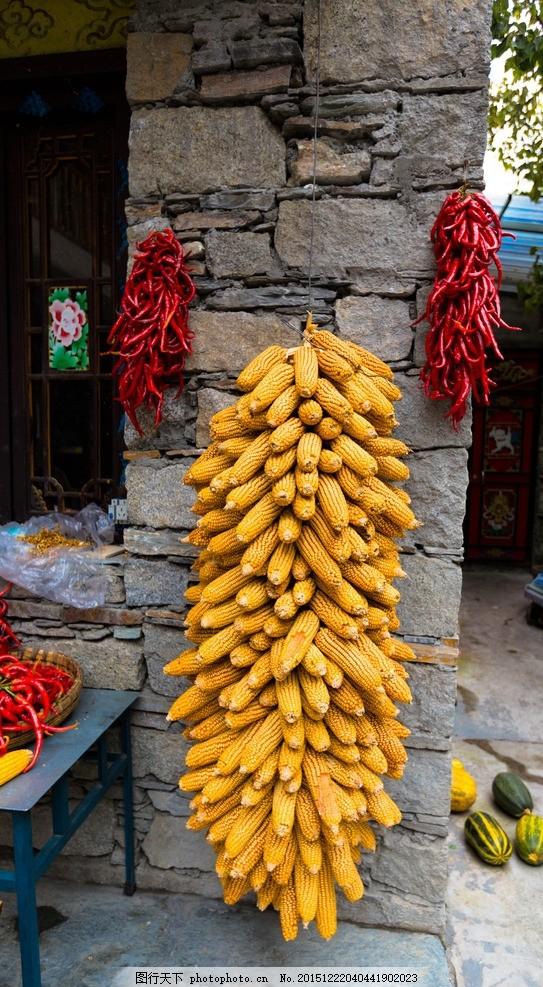 玉米串 少数民族民居 粮食 房子 摄影