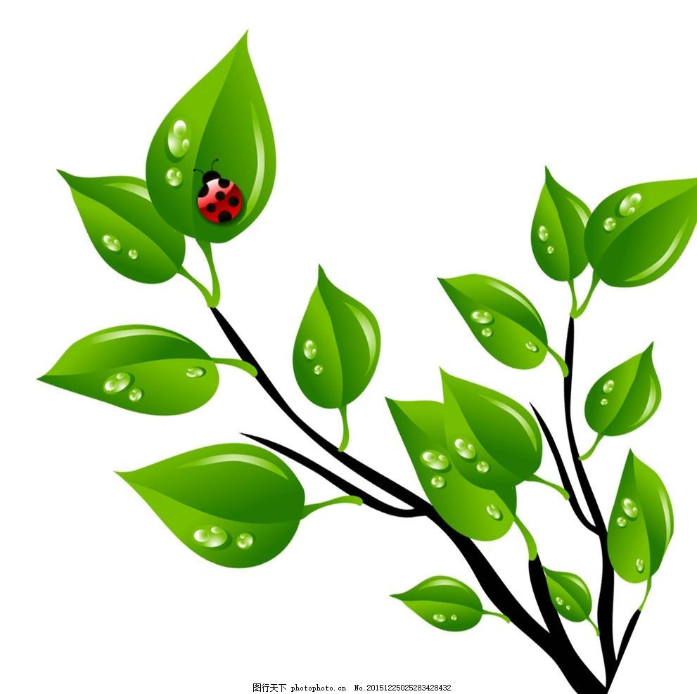 简洁花纹 矢量黑白花纹 绿色树叶 绿色树藤 矢量树枝 昆虫 七星瓢虫