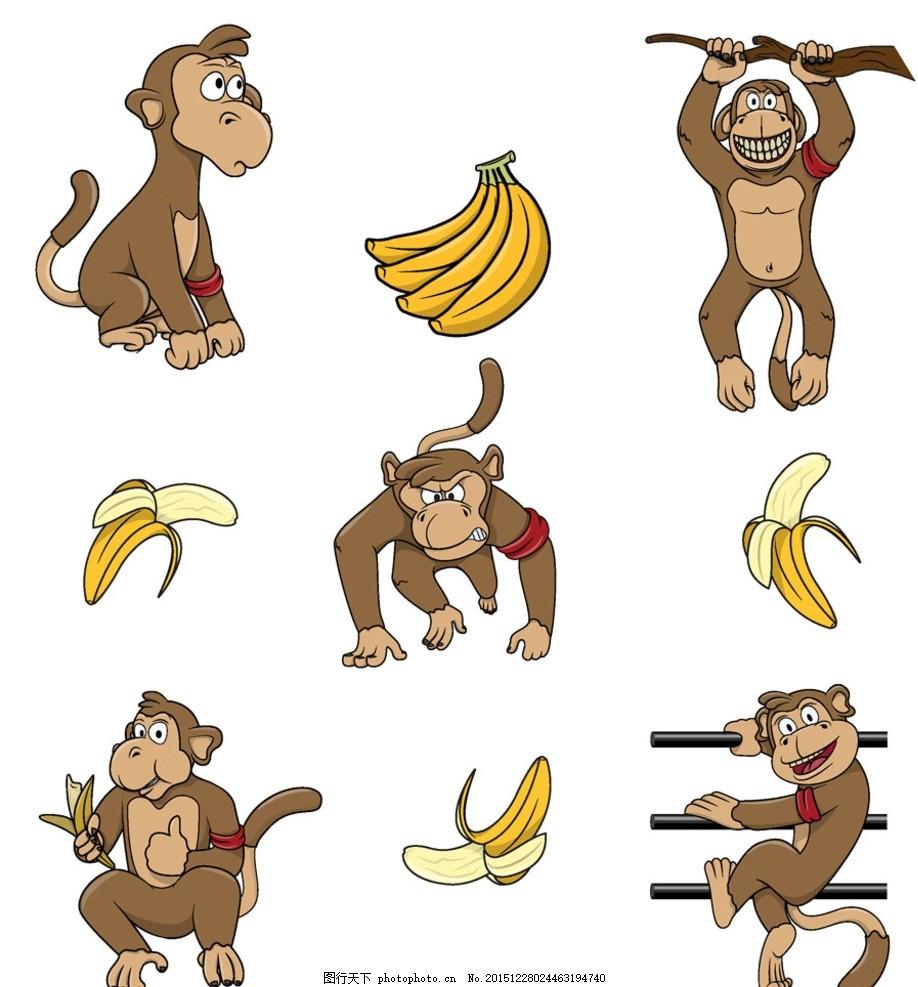 吃香蕉的猴子